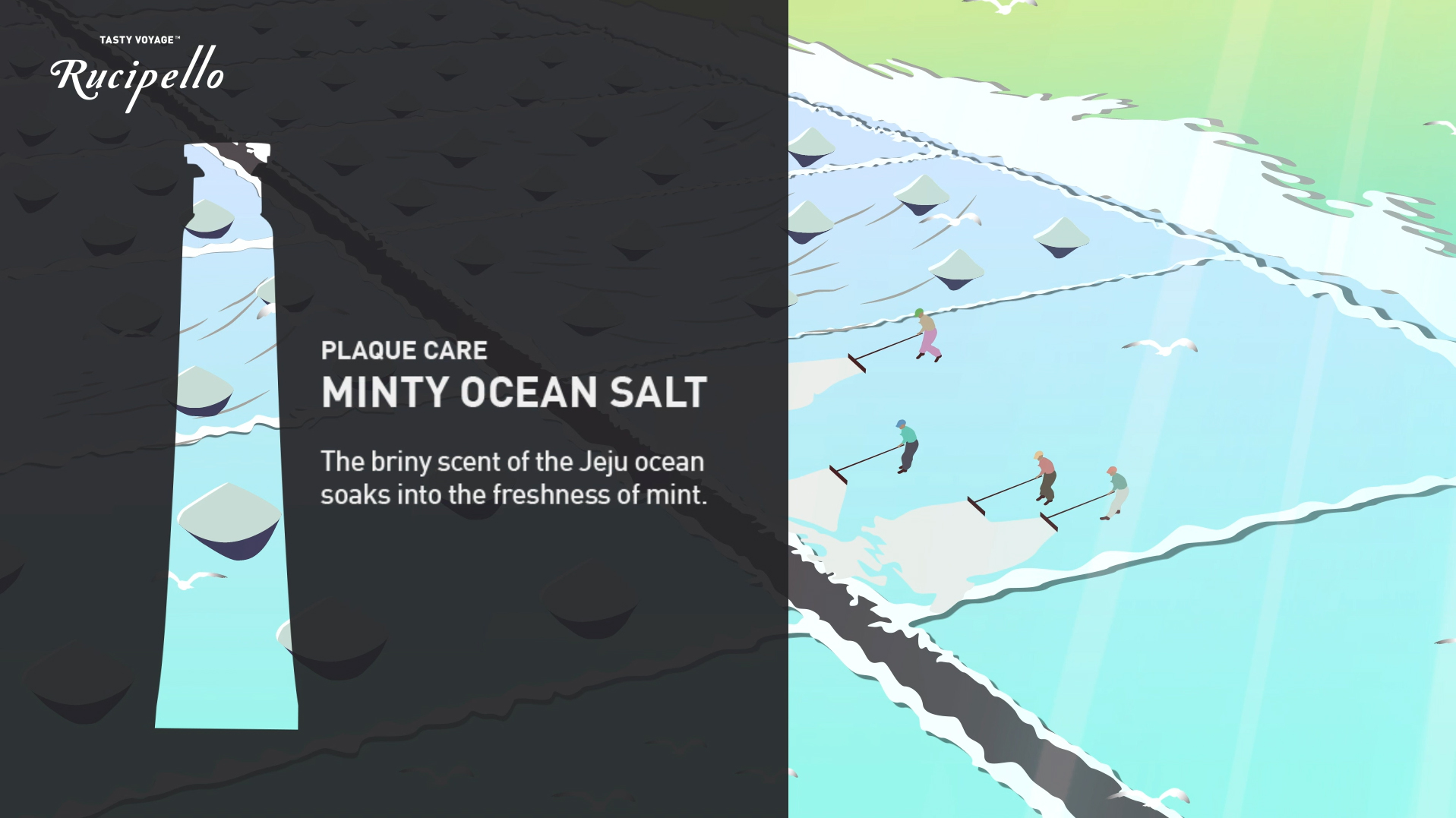 MINTY OCEAN SALT MOVIE